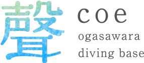 聲 coe ogasawara diving base