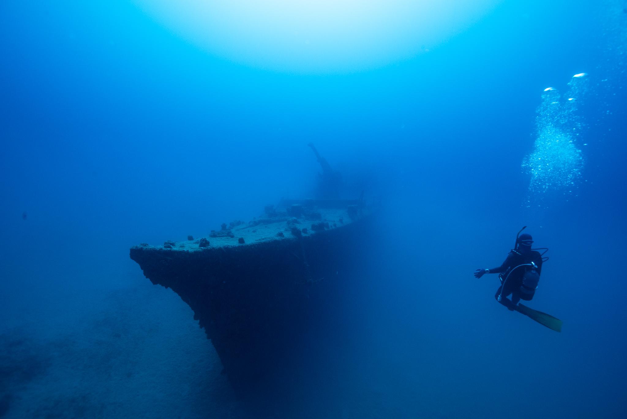 駆潜艇を貸し切り!